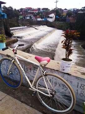 Paling dicari cat pabrikan Fixie soloist 1 united bike Arema kota