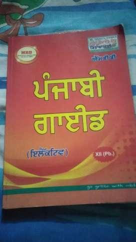 12 punjabi guide