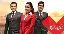 Spicejet Staff job available