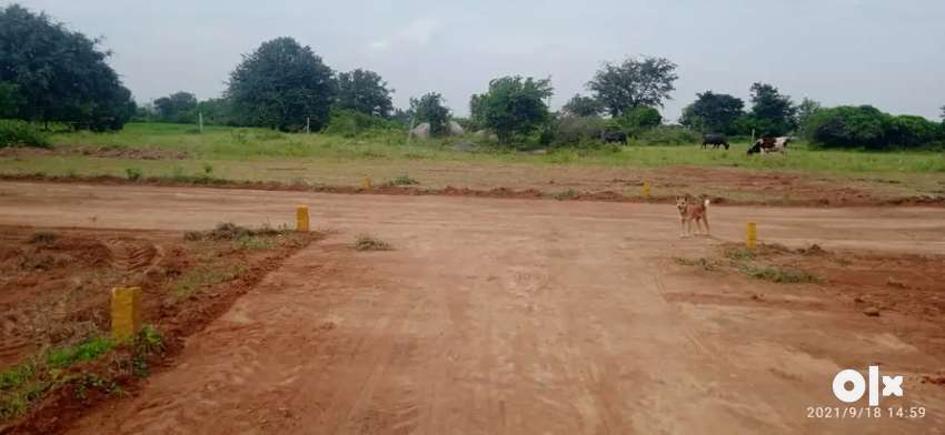 E.M.I Open Plots For Sale In Hyderabad