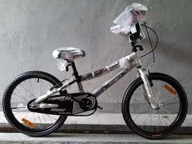 Sepeda BMX Family Fiber 20