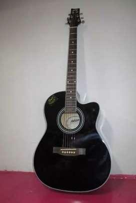 Premium Guitar