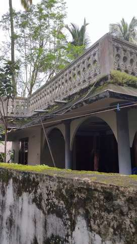 5.5 cent land Urgent sale of house in areekkad