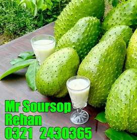 Soursop & Eating oxygen Available in Pakistan