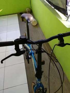 Viva cycle ukuran 20