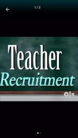 Tution teacher available
