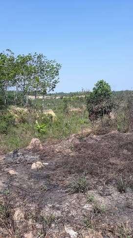 Tanah 7 ha KM 38 Samboja