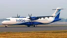 Description indigo full talk time job   Bulk hiring for Airport Indust