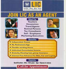 LIC Insurance Advisor
