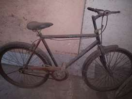 Cycle ( need repaire )