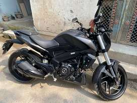 Dominor 2019 @ new condition only 1100 km run