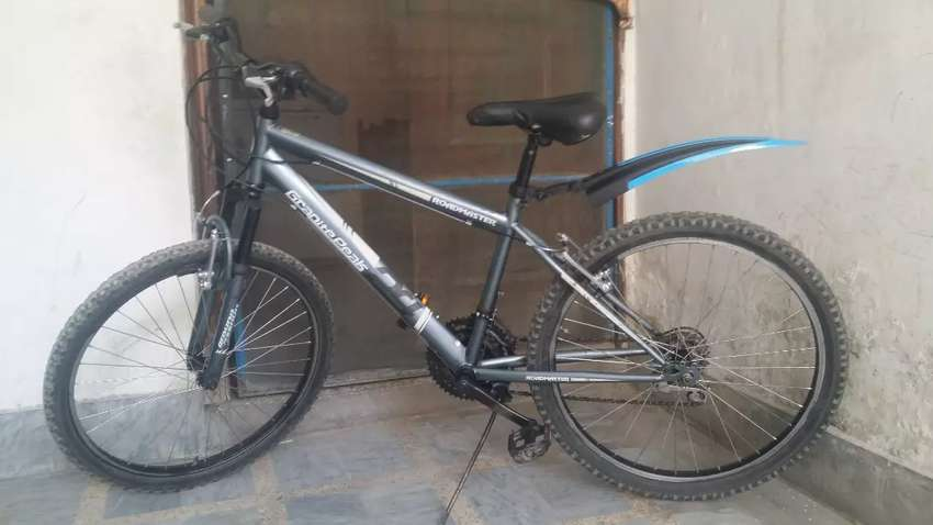Road Master bicycle in Excellent condition 0