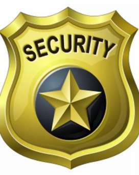 Direct Security Guard Job