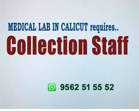 COLLECTION JOBS