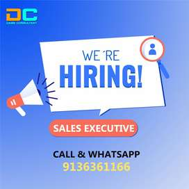 Sales Executive | FMCG Sales Job Delhi, Darya Ganj | DABS Consultant