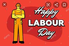 Contact me for labour card
