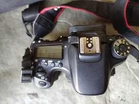 Canon 70 d DSLR