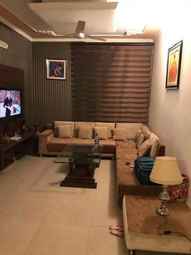 Owner free 2bhk fully furnish for rent in sector 49 chd and in flats