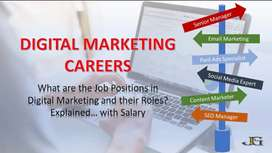 Looking for an Exp. Digital Marketing Expert,for medical promotion.