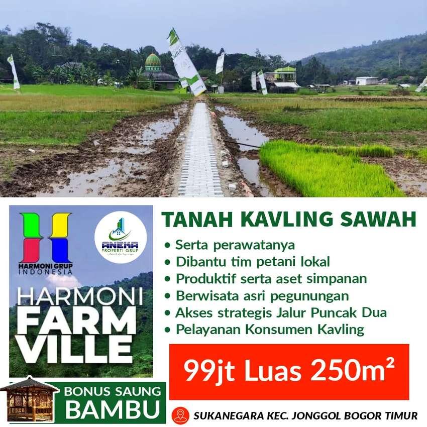 Harmoni Farm Ville Tanah Sawah Kavling Produktif Jonggol