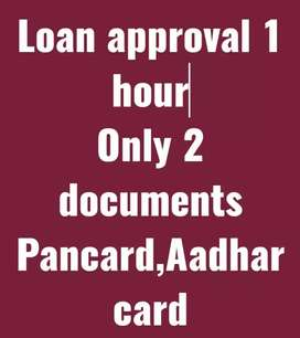 1000 to 30000 loan approval only 1 hour