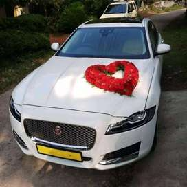 All types of  premium wedding cars