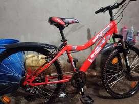 Avon amigo 6 gear cycle