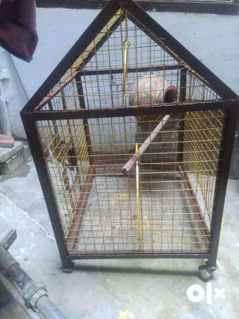 Big cage Pinjra 0
