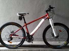 Sepeda MTB Element Triojet
