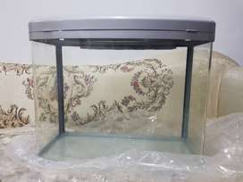 Imported Fish Aquarium