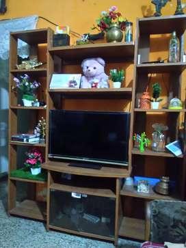 TV sockesh unit