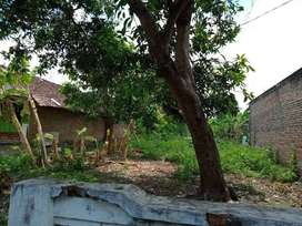 Jual Tanah Kosong Gayaman Mojokerto