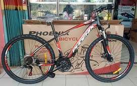 MTB Phoenix 179 XR