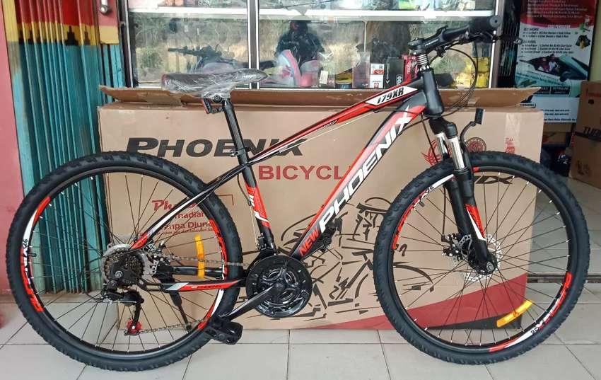 MTB Phoenix 179 XR 0
