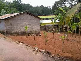 10 cent plot with shed near Govt HSS Elampa for sale