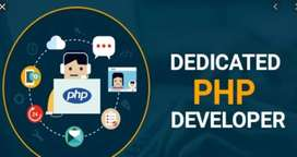 Strong knowledge on PHP OR ASAP  NET Any language