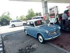 Fiat 1100 kupu kupu (Rare)