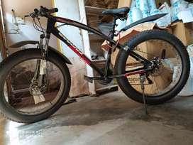 Fat tyre cycle bike