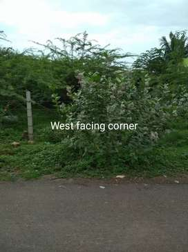 Gerugambakkam near Arjun garden