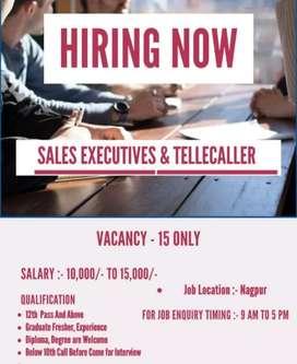 Telecallar executive