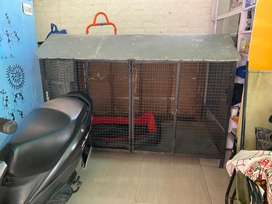 Extra Large cage for Adult Dogs