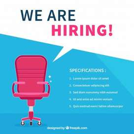 Wanted experienced female ps executive for handling placement agency