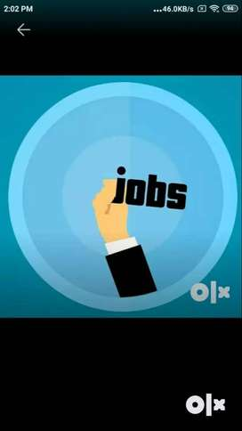 Urgently office executive required ---only 15 posts are left