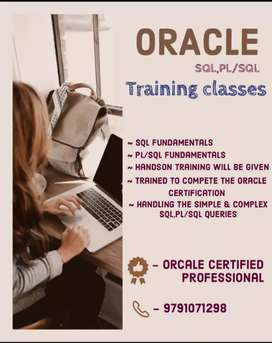 Oracle SQL and Plsql Classes