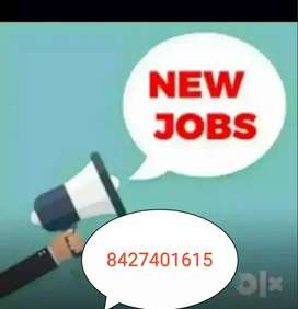 We are providing home based job data typing