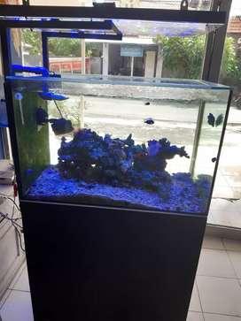 Aquarium fulset