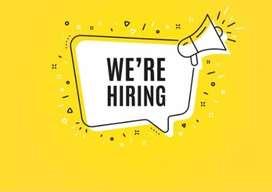 We are hiring accountants. all over kerala job vacancy