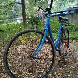 Lady bird cycle modified
