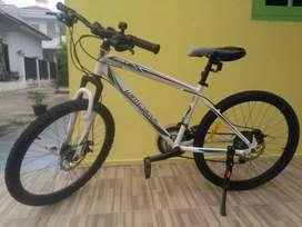 "Sepeda MTB Wimcycle Roadcamp 24"""