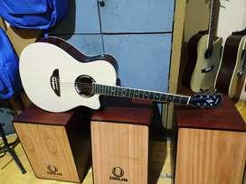 Gitar Elektirk Akustik yamaha terlaris